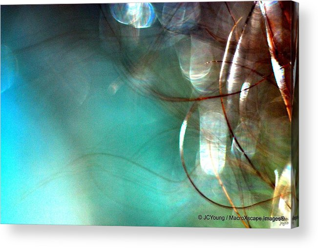 Macroimpressionism Acrylic Print featuring the photograph Sea World by JCYoung MacroXscape