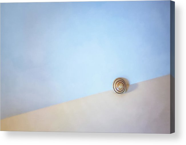 Seashell Acrylic Print featuring the photograph Seashell by the Seashore by Scott Norris