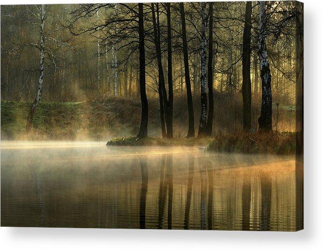 Pond Acrylic Print featuring the photograph Silent Light. by Agnieszka Jankowska