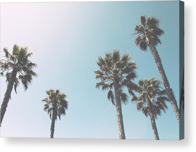 Palm Trees Acrylic Print featuring the photograph Summer Sky- by Linda Woods by Linda Woods