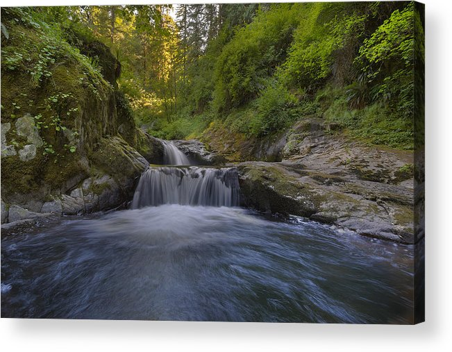Sweet Creek Falls Trail Complex Acrylic Print featuring the photograph Sweet Little Waterfall by David Gn
