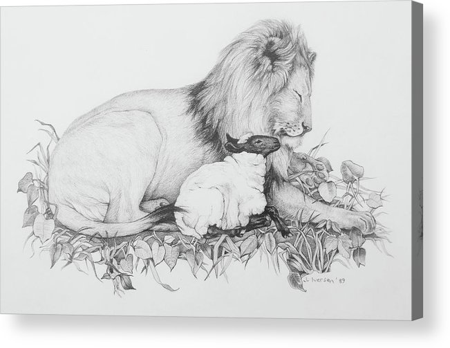 Lion Of Judah Acrylic Print featuring the drawing The Lion And The Lamb by Jill Iversen