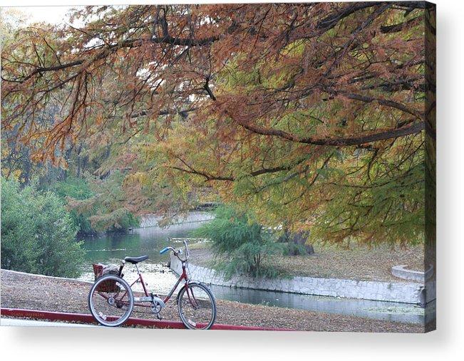 Digital Acrylic Print featuring the photograph Through the Park by Diana Valadez