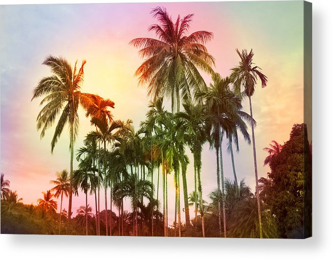 Tropical Acrylic Print featuring the photograph Tropical 11 by Mark Ashkenazi