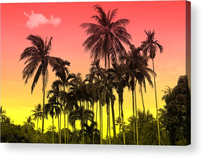 Acrylic Print featuring the photograph Tropical 9 by Mark Ashkenazi