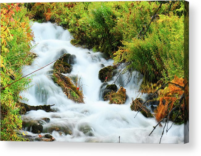 Waterfall Acrylic Print featuring the photograph Utah Cascade by Dennis Hammer