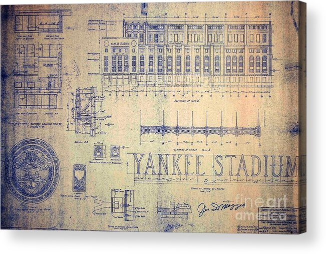 Joe Dimaggio Acrylic Print featuring the drawing Vintage Yankee Stadium Blueprint by Peter Ogden Gallery
