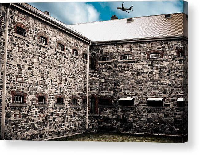 Freedom Acrylic Print featuring the photograph What Freedom Means by Kelly King
