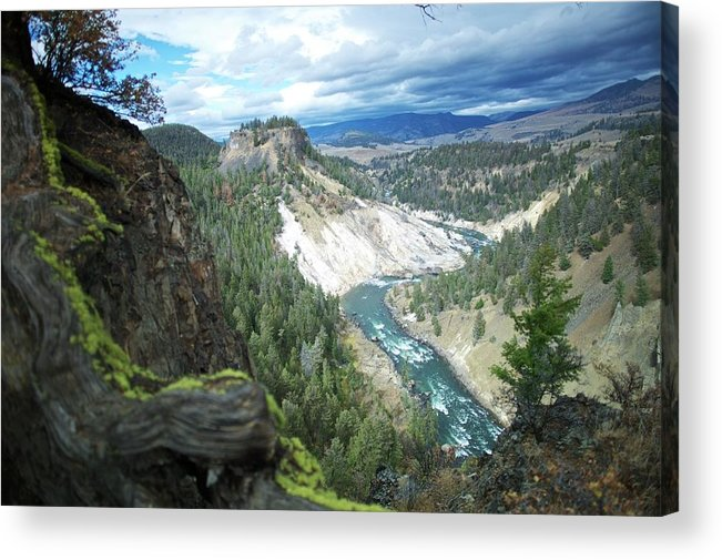 Scenics Acrylic Print featuring the photograph Yellowstone River by Dominik Eckelt