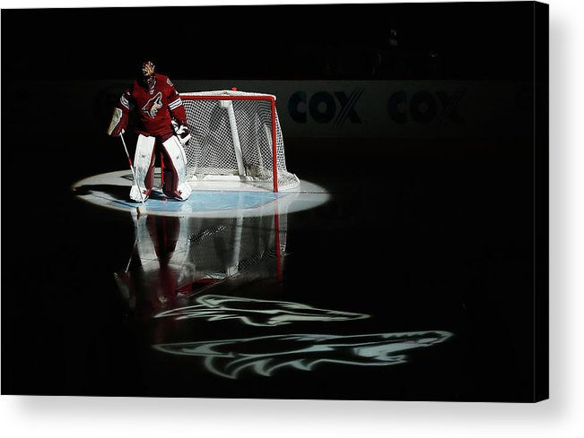 People Acrylic Print featuring the photograph Detroit Red Wings V Arizona Coyotes by Christian Petersen