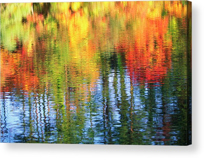 Outdoors Acrylic Print featuring the photograph Autumn Color Reflection by Ooyoo