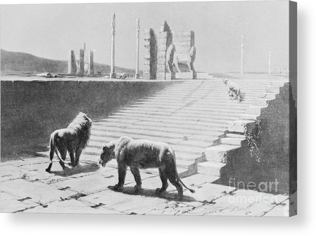 Ancient History Acrylic Print featuring the photograph Babylon After Being Destroyed by Bettmann