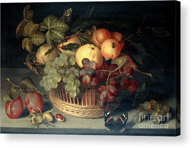 Plum Acrylic Print featuring the drawing Basket Of Fruit And Admiral Butterfly by Print Collector
