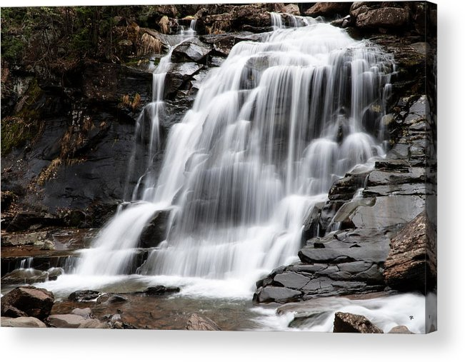 Waterfall Acrylic Print featuring the photograph Bastion Falls by Tom Romeo