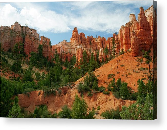 Scenics Acrylic Print featuring the photograph Bryce Canyon by Wsfurlan