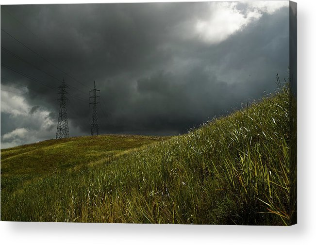 Trinidad Acrylic Print featuring the photograph Caroni Grasslands by Trinidad Dreamscape
