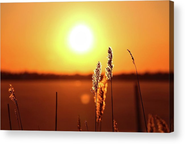 Sunset Acrylic Print featuring the photograph Cold Sunset by Ingui