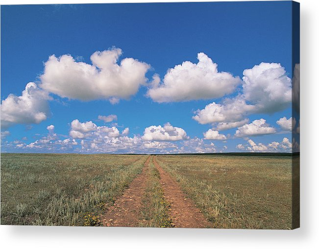 Grainy Acrylic Print featuring the photograph Dirt Road On Prairie With Cumulus Sky by Mimotito