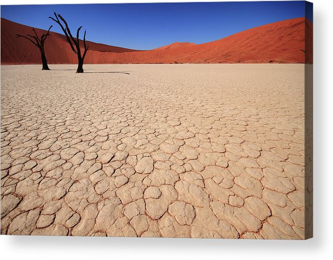 Scenics Acrylic Print featuring the photograph Dry Pan Of Deadvlei Plus Two Dead Trees by Klaus Brandstaetter
