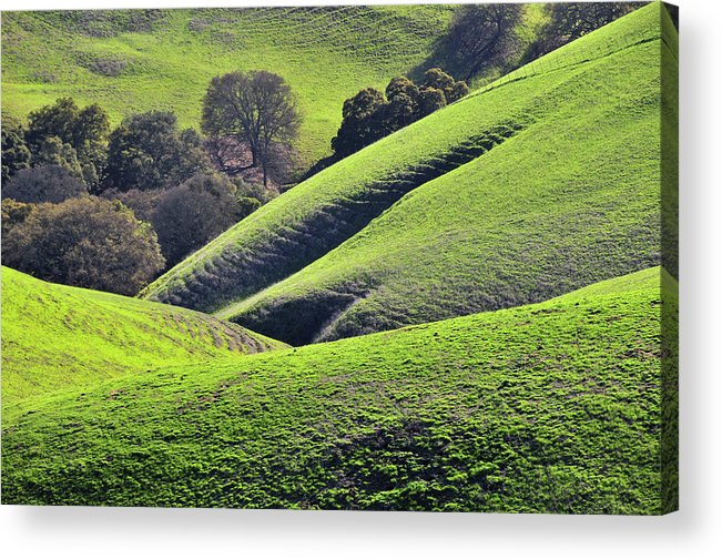 Scenics Acrylic Print featuring the photograph Green Rolling Hills Of Central by Mitch Diamond