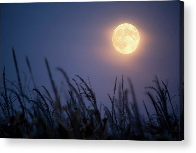 Sky Acrylic Print featuring the photograph Harvest Moon by Jimkruger