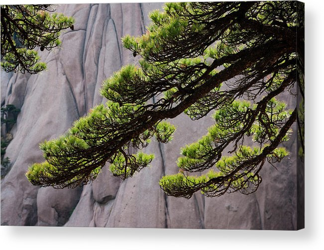 Chinese Culture Acrylic Print featuring the photograph Huang Shan Landscape, China by Mint Images/ Art Wolfe