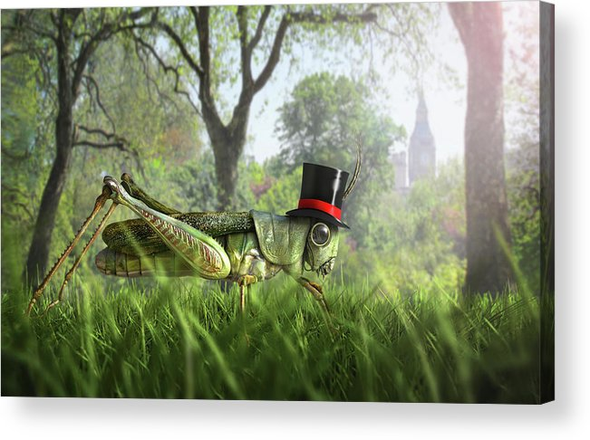 Grass Acrylic Print featuring the digital art Illustration Of Cricket Wearing Monocle by Chris Clor