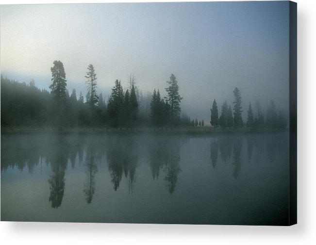 Mystery Acrylic Print featuring the photograph Morning Fog Over Yellowstone River by Design Pics/natural Selection Robert Cable