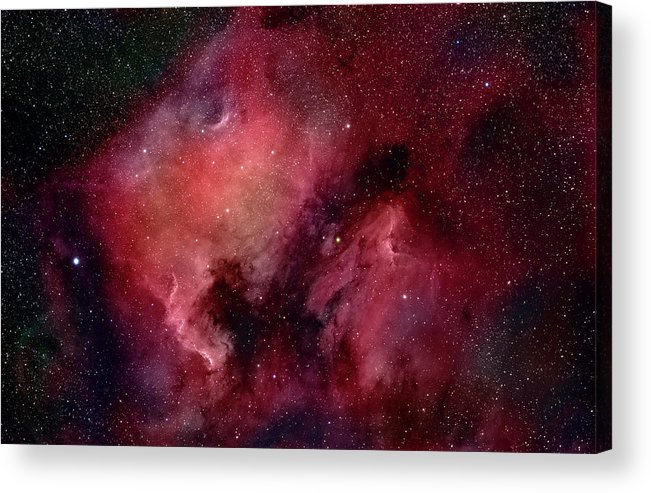 Majestic Acrylic Print featuring the photograph Nebulae In Cygnus by Plefevre
