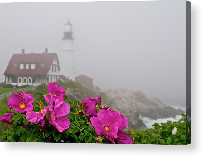 Built Structure Acrylic Print featuring the photograph Portland Headlight With Rosa Rugosa And by Www.cfwphotography.com