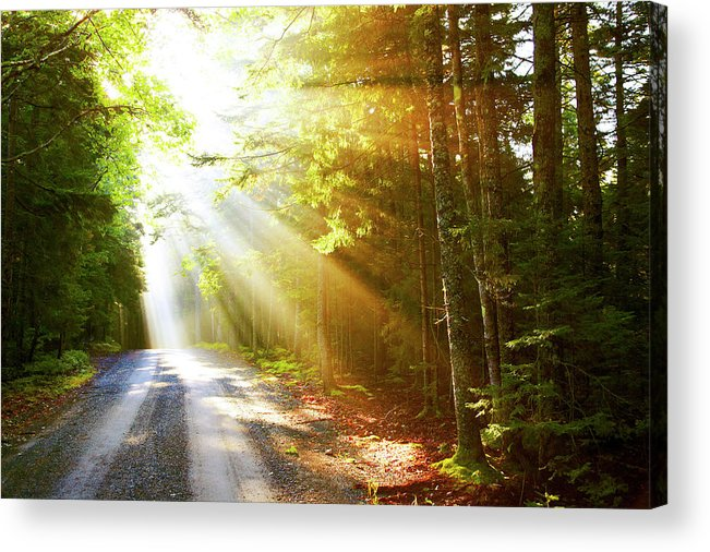 Outdoors Acrylic Print featuring the photograph Sunflare On Road by Thomas Northcut