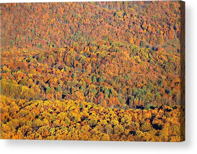 Colorful Acrylic Print featuring the photograph Sweeping Beauty by Candice Trimble