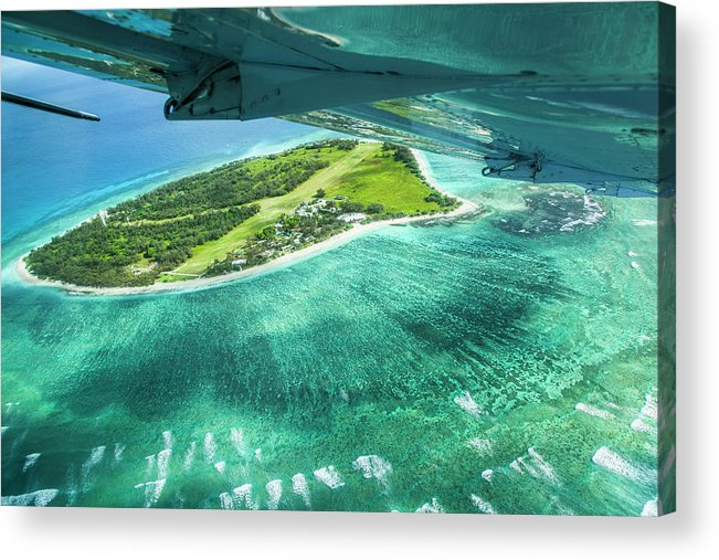 Grass Acrylic Print featuring the photograph Taking Off From Great Barrier Reef by Nick