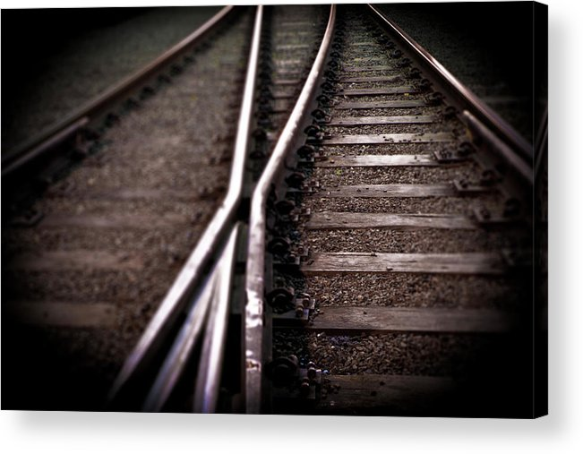 Freight Transportation Acrylic Print featuring the photograph Train Line Crossing by Mikulas1