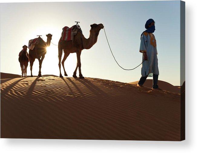 People Acrylic Print featuring the photograph Tuareg Man & Camels, Erg Chebbi, Sahara by Peter Adams