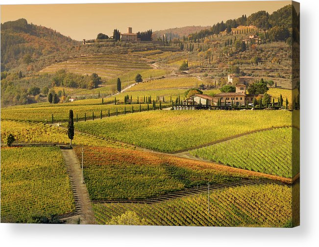 Scenics Acrylic Print featuring the photograph Tuscany Farmhouse And Vineyard In Fall by Lisa-blue