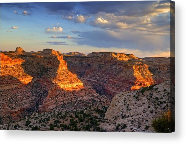 Scenics Acrylic Print featuring the photograph Wedge Overlook by Yvonne Baur