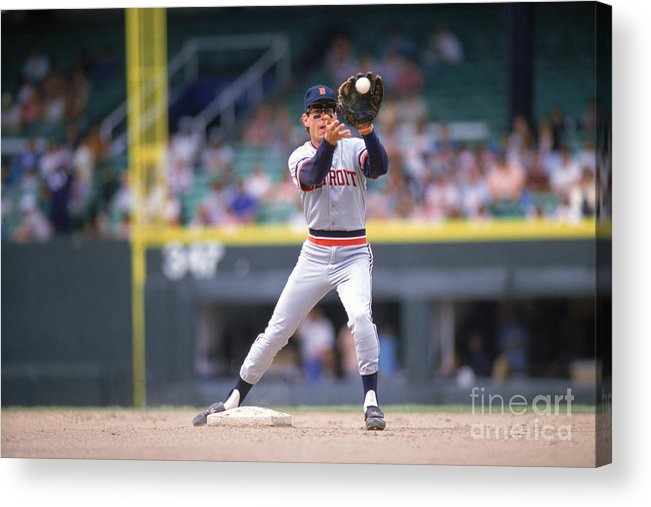 American League Baseball Acrylic Print featuring the photograph Alan Trammell by Ron Vesely