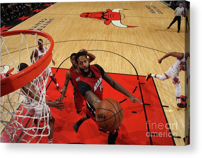 Nba Pro Basketball Acrylic Print featuring the photograph James Johnson by Gary Dineen