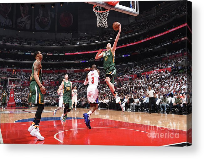 Playoffs Acrylic Print featuring the photograph Joe Ingles by Andrew D. Bernstein