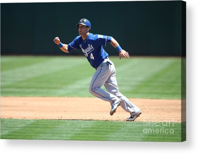 American League Baseball Acrylic Print featuring the photograph Alex Gordon by Brad Mangin