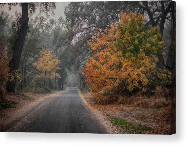 Photography Acrylic Print featuring the photograph Bidwell Fall by John Heywood
