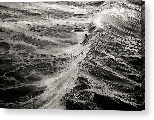 Body Surfer Acrylic Print featuring the photograph Body Surfing by Zayne Diamond Photographic