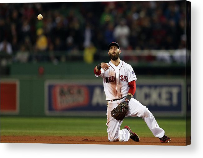 Playoffs Acrylic Print featuring the photograph Dustin Pedroia by Rob Carr