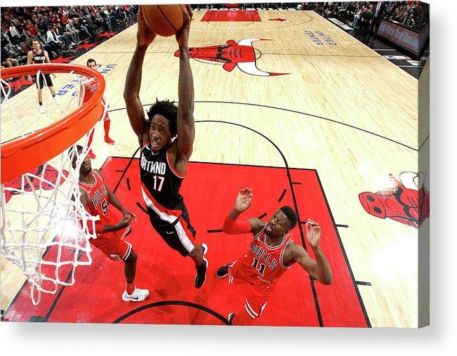 Nba Pro Basketball Acrylic Print featuring the photograph Ed Davis by Gary Dineen