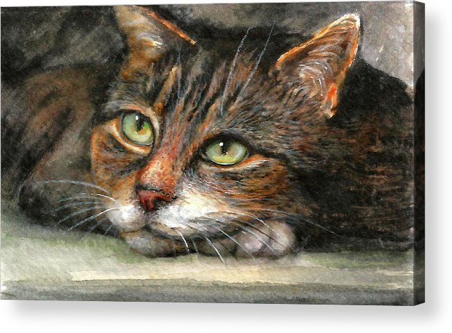 Cat Acrylic Print featuring the painting Kitty by Natalja Picugina