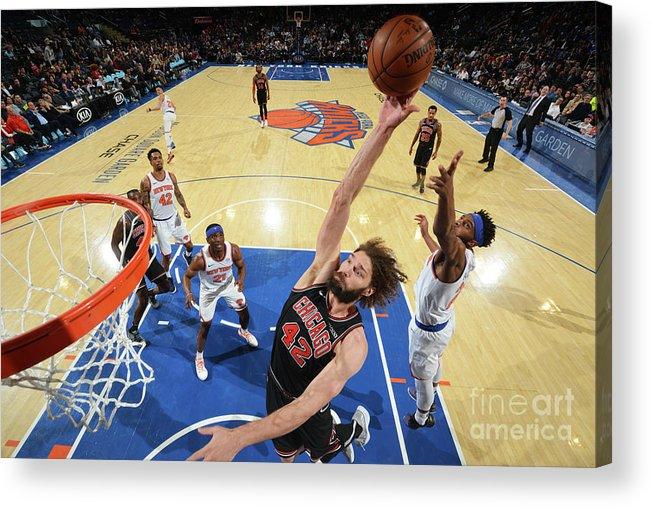 Nba Pro Basketball Acrylic Print featuring the photograph Robin Lopez by Jesse D. Garrabrant