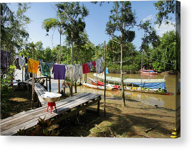 Amazon Rainforest Acrylic Print featuring the photograph Simple Life in Amazon,Brazil by Paulo Amorim