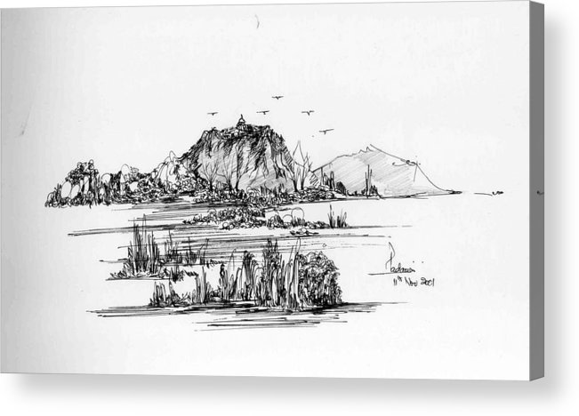 Hills Acrylic Print featuring the drawing Hills grass and some birds by Padamvir Singh