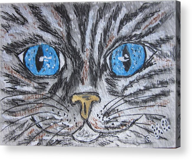 Blue Eyes Acrylic Print featuring the painting Blue Eyed Stripped Cat by Kathy Marrs Chandler
